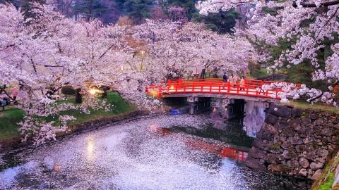 Nagoya – Osaka - Kyoto - Hakone - Fuji Mountain – Tokyo
